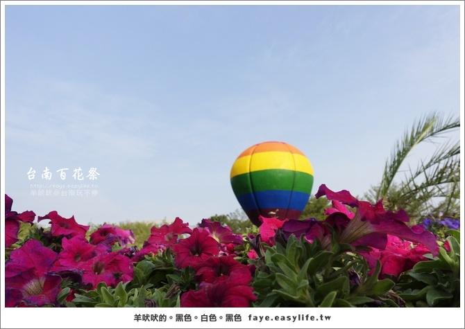 【台南百花祭】。農曆年節好悠閒,闔家踏青玩賞趣!(水萍塭公園、水交社公園)